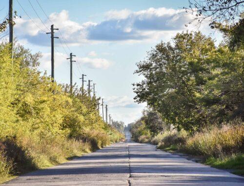 Licitan la obra de pavimentación de Ruta 25